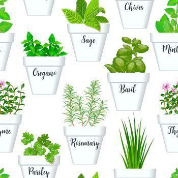 Oregano, Thyme, Sage, Garlic, and tons of other herbs help keep you healthy.