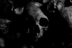 black and white skull in darkness