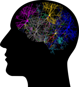 black silhouette of a head with different colored neurons connecting in the brain area.