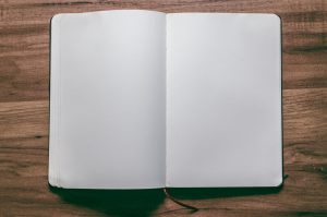 journal open with 2 blank pages