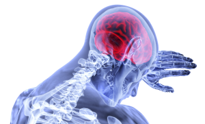 illustration of skeletal with the brain colored in red.