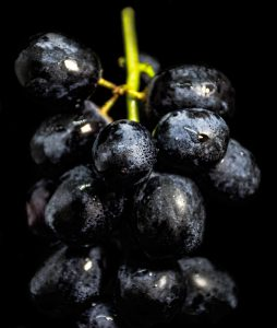 dark purple grape bunch