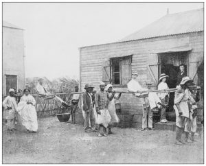 black and white picture of afircan american slaves walking in a line