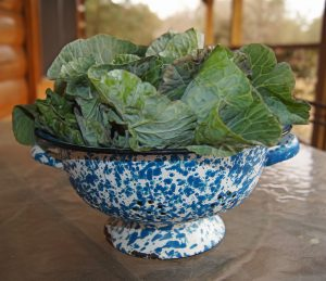 collard greens in a blue and white bowl