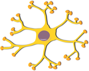 yellow nerve cell with purple in the middle