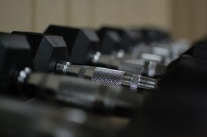 dumb bells lined up in a row